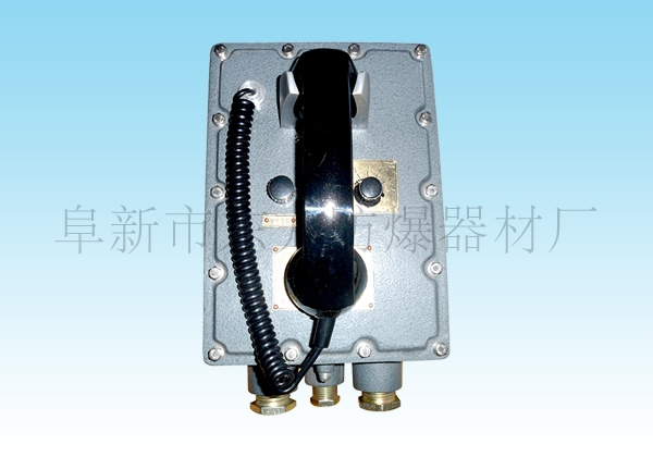 防爆工业电话